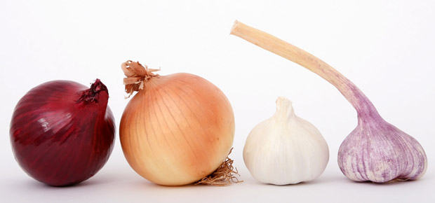 garlic or onion